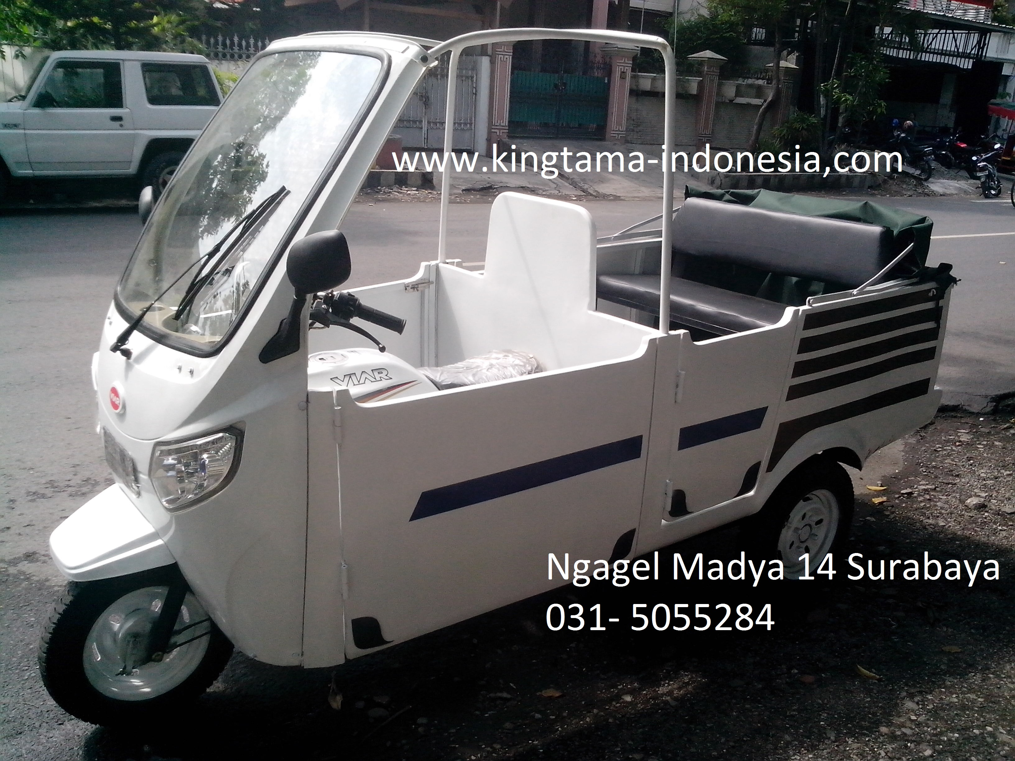 kingtama motor viar golf